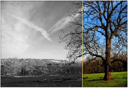 InPixio Photo Clip 8 : Logiciel de retouche photo en ligne ...